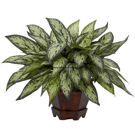 silk plants 14 quot aglaonema silver queen silk plant w vase