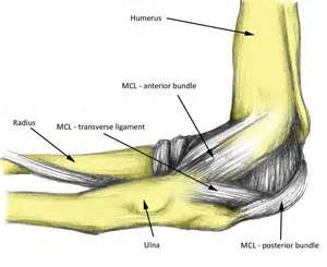 Symptoms of a medial ligament injury