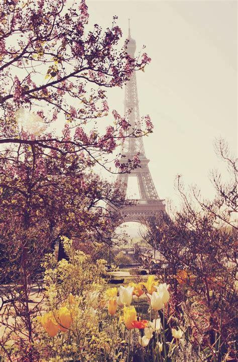 libro paris in bloom paris in bloom scenery par 237 s torres