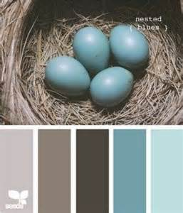 robins egg color robins egg blue color schemes colors