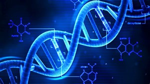 Blueprint Genetics How To Extract Your Own Dna Using Basic Kitchen Supplies
