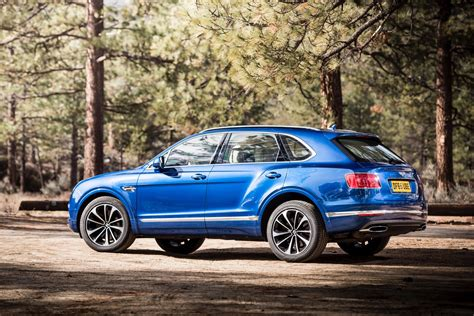 blue bentley 2016 2016 bentley bentayga cars suv blue wallpaper 1600x1068