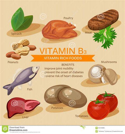 vitamina b3 alimenti vitamina b3 vitaminas y comidas de los minerales dise 241 o