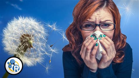 Trending Today Allergic To Algebra by Why Do We Get Allergies From Reactions Path