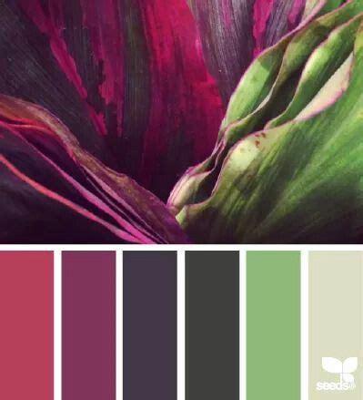 Exclusive Deal 25 At Simplysolescom by Las 25 Mejores Ideas Sobre Flores De Color P 250 Rpura Oscuro