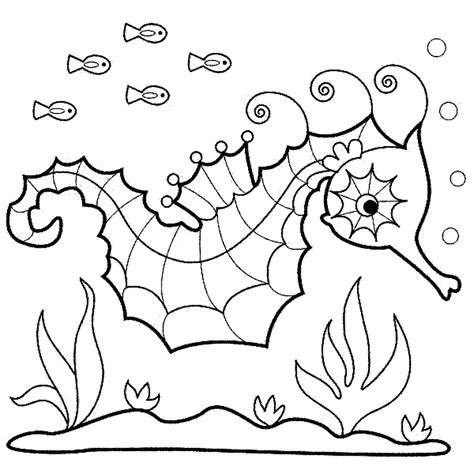 Mukena Kudapony Paud kumpulan gambar kuda laut untuk di warnai anak anak mewarnai gambar