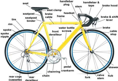 Tas Sepeda Co Trek toko sepeda majuroyal anatomi part sepeda size