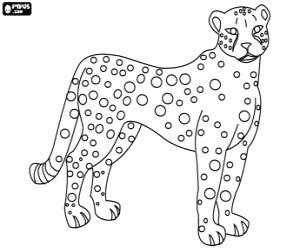 jaguar coloring page for preschool jaguar coloring pages for kids preschool and kindergarten