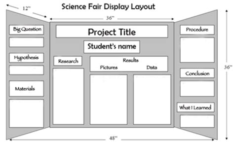 science fair project board template science fair miss vandenburgh s science class website