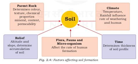 pattern formation factors notes of ch 2 land soil water natural vegetation and