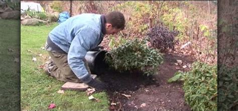 how to lay down mulch for new plants in the winter 171 gardening