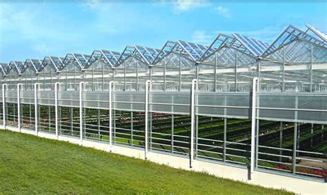green houses commercial greenhouse manufacturer rough brothers inc