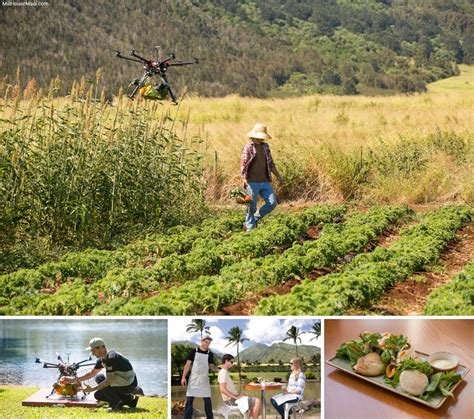 farm to table delivery farm to table restaurant delivery via drone droneabove