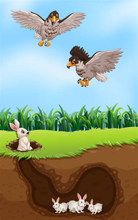 eagle hunting rabbit   vector art stock