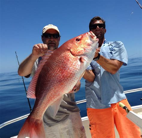st augustine party boat fishing offshore deep sea fishing charter st augustine fl