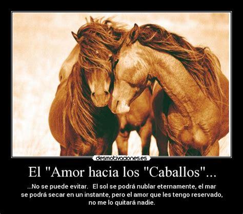 imagenes romanticas con caballos imagenes de caballos de amor imagui