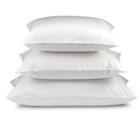 Lite Primaloft Pillows by The Alternative Pillow Collection From Pacific