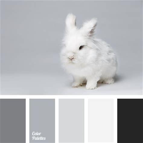 black and white color scheme 25 best ideas about black color palette on