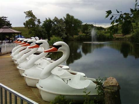 paddle boats history file swan paddle boats jpg