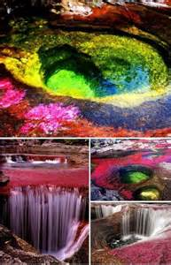 river of 5 colors the five color river colombia a whole new world