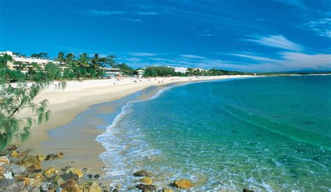 dolphin house noosa noosa what to expect australian traveller
