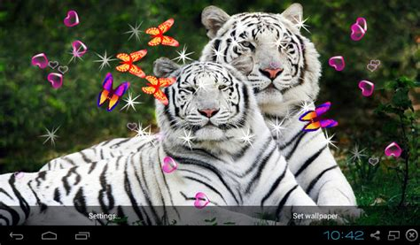 bengal tiger  wallpapers apk