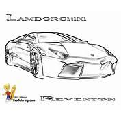 Drawn Lamborghini Traceable  Pencil And In Color