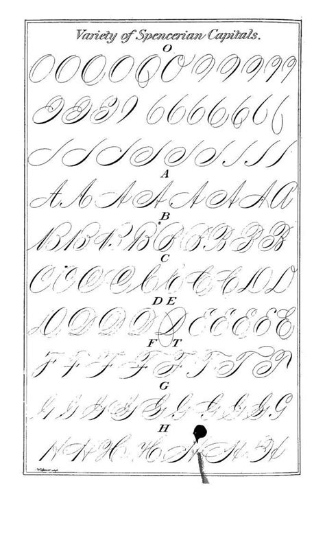 Roundhand 76 Cc 76 best script images on typography letters lettering and lyrics