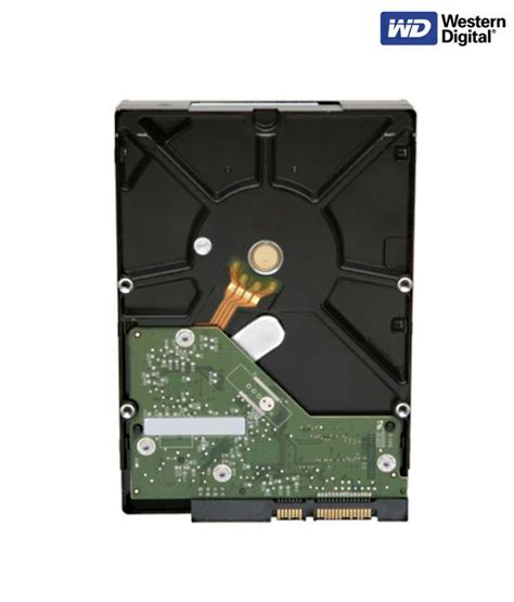 Harddisk Wd Green 1tb western digital caviar green 10ezrx drive 1tb questions and answers for