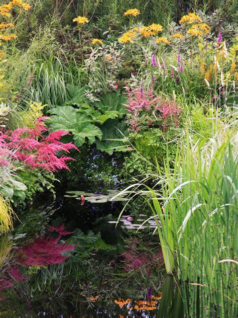 Bog Garden by Create A Beautiful Bog Garden Hgtv