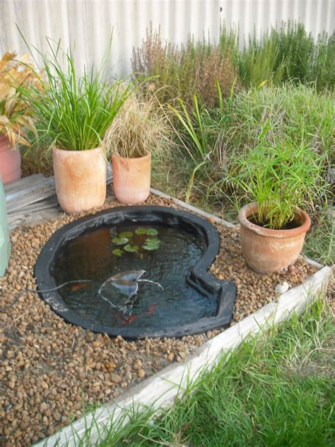 Fish Pond Garden Pond Edging Stones Fish Pond Plants For Pond Ideas For Small Gardens