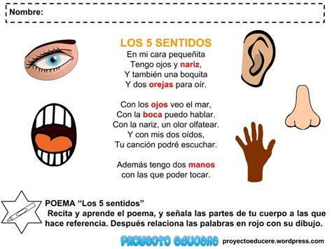 los 5 sentidos de image gallery los 5 sentidos