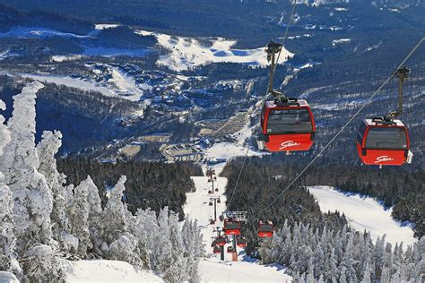 buy a mountain vail resorts to buy stowe mountain for 50 million