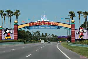 it s not a zoo it s a jungle walt disney world animal