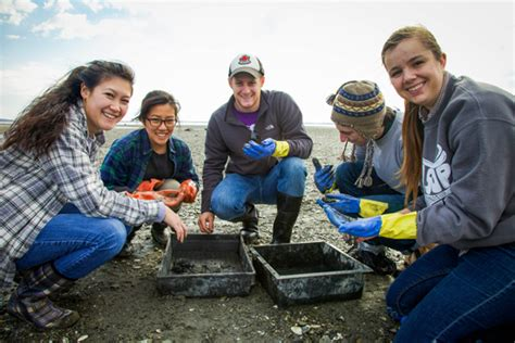 Boston College Mba Community Service by Csc Encourages Students To Branch Out Bu Today Boston