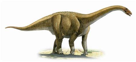 gambar dinosaurus kumpugas