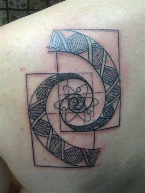 fibonacci spiral tattoo atom dna golden spiral outline by joe shupp of baltimore