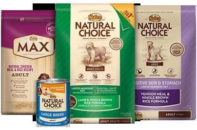 miglior alimento per cani miglior cibo per cani cibo per cani