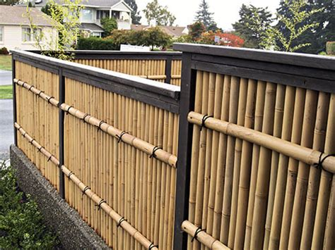 Water In Backyard Problem Bamboo Fencing Landscaping Gardening Ideas