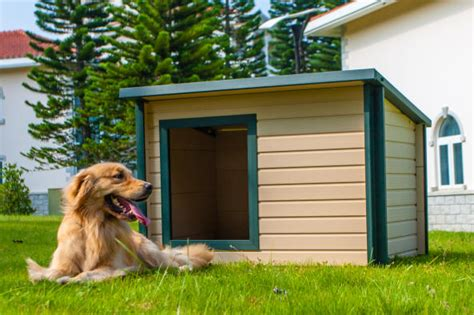 where to buy dog houses large dog house large dog houses free ship no tax
