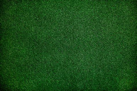 wallpaper samsung daun 1000 beautiful green background photos 183 pexels 183 free