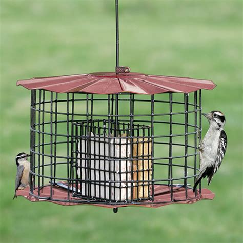 duncraft com copper baffled suet feeder