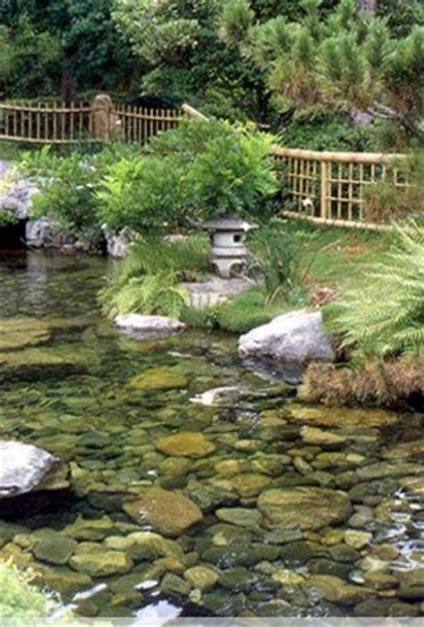 Million Dollar Backyard Pond by 503 Best Images About Garden Water Gardens On