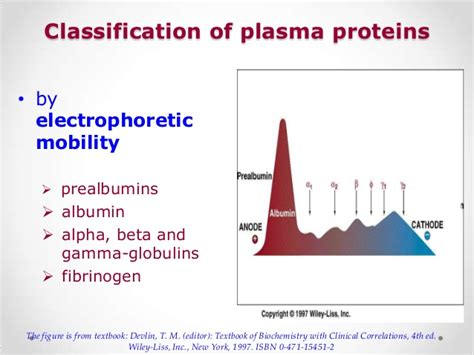 t protein in blood my plasma proteins