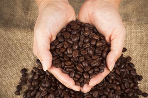 How to oven roast your own coffee
