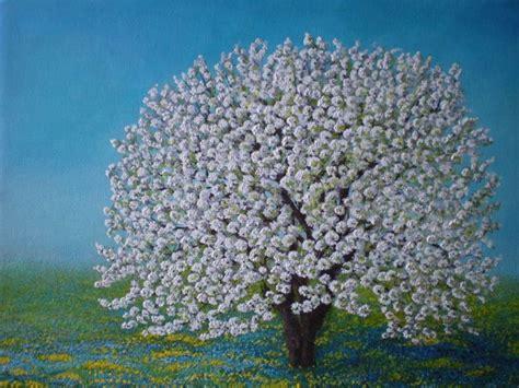 ciliegio in fiore ciliegio in fiore opera d arte di ivana loviselli