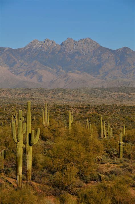 arizona desert landscape photos pinterest