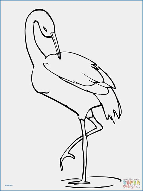 flamingo beak template flamingo drawing template at getdrawings free for