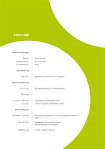 Lebenslauf Vorlage Kreativ Musterbewerbung Vorlagen Bewerbung Agentur