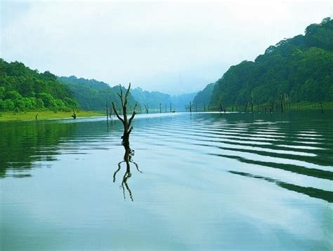 wallpaper for walls kerala kerala images thekkady wallpaper and background photos